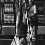 9 отцов-основателей фитнеса: от Пилатеса до Шварценеггера