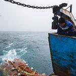 Гонка за минтаем в Японском море: репортаж Men's Health